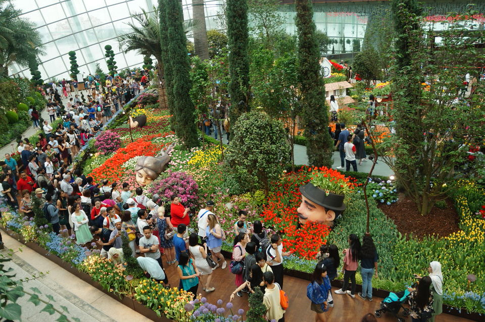 Flower Dome w Gardens by the Bay